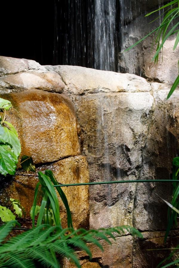 20090704_10-54 - Зоопарк - 070