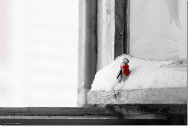Зимнее окно